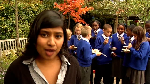 london schools signed up to royal horticultural society gardening campaign; reporter to camera - 英国王立園芸協会点の映像素材/bロール