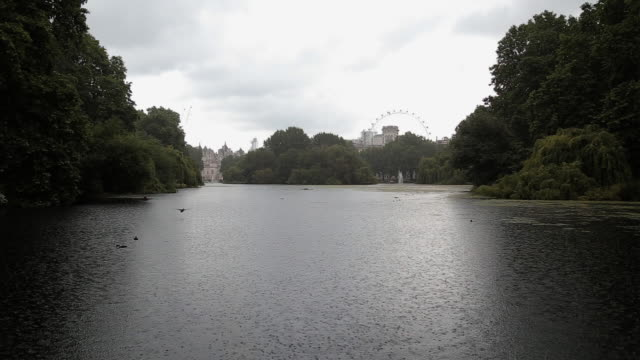 london st. jame's park on a rainy day - honour guard stock videos & royalty-free footage
