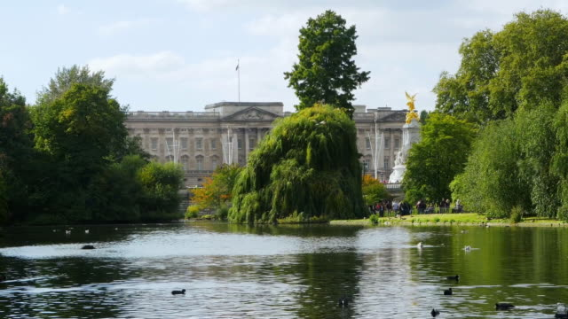 vídeos de stock, filmes e b-roll de london st. james's park and buckingham palace cinemagraph - palácio de buckingham