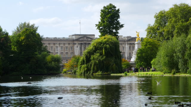 london st. james's park and buckinham palace - landscaped stock videos & royalty-free footage