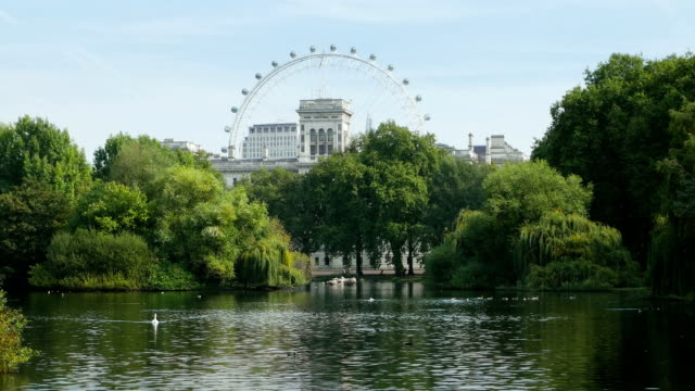 london st james's park (4k/uhd to hd) - millennium wheel stock videos & royalty-free footage