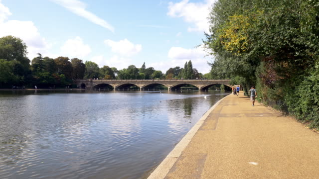 london the serpentine lake in hyde park - lakeshore stock videos & royalty-free footage