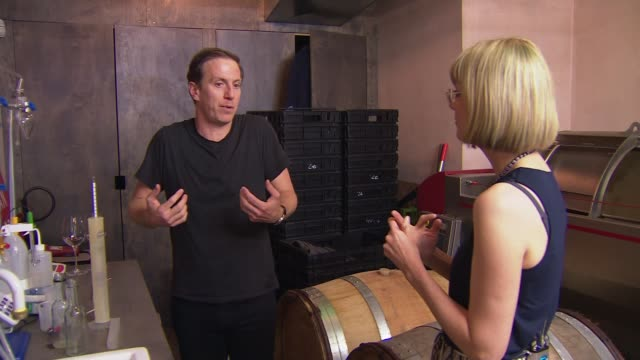 london winery prepares to harvest grapes grown in england; england: london: battersea: int gavin monery interview with reporter sot - grape stock videos & royalty-free footage