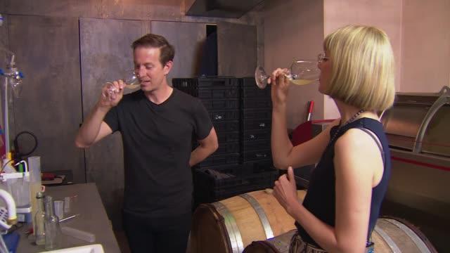 london winery prepares to harvest grapes grown in england; england: london: battersea: int gavin monery distilling wine wine bottles in fridges and... - juice drink stock videos & royalty-free footage
