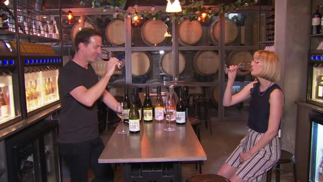 london winery prepares to harvest grapes grown in england; england: london: battersea: int gavin monery interview with reporter as tasting wine sot... - grape stock videos & royalty-free footage