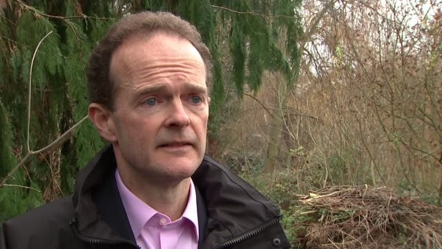five animals feared dead london zoo ext dominic jermey interview sot - five animals stock videos and b-roll footage
