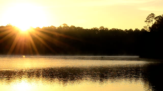 lone kayaker on calm, misty forest lake with sun on tree tops - florida us state stock videos and b-roll footage