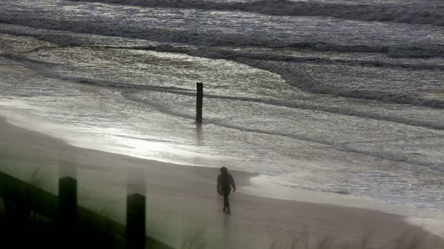 lone person on beach and grass in wind, netherlands - atmospheric mood stock videos & royalty-free footage