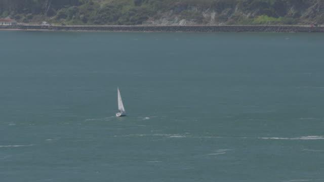 vídeos y material grabado en eventos de stock de lone sailboat in san francisco bay - vector