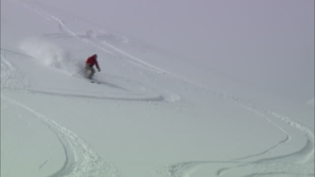 HA, WS, Lone skier gliding down mountainside and falling down, Cariboo and Monashee Mountains, British Columbia, Canada