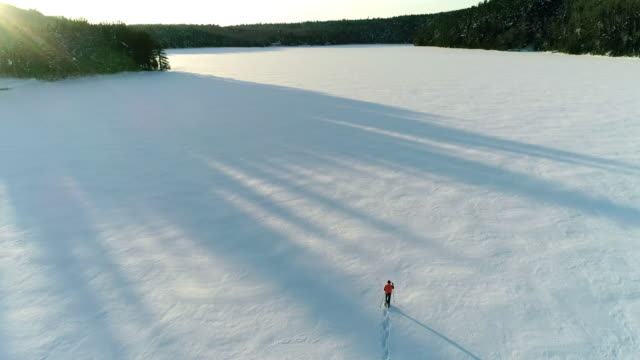 vídeos y material grabado en eventos de stock de a lone snowshoer from above with long shadows - perdido