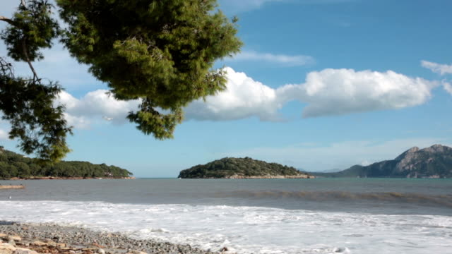 lonely beach in mallorca - pinaceae stock videos & royalty-free footage