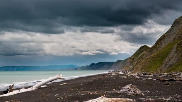time lapse: solitario sulla spiaggia - area selvatica video stock e b–roll