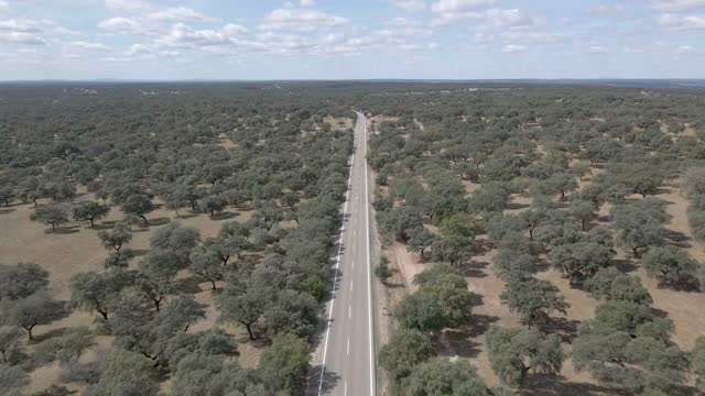 lonely road - spanien stock-videos und b-roll-filmmaterial
