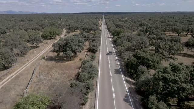 vídeos de stock e filmes b-roll de lonely road - vale