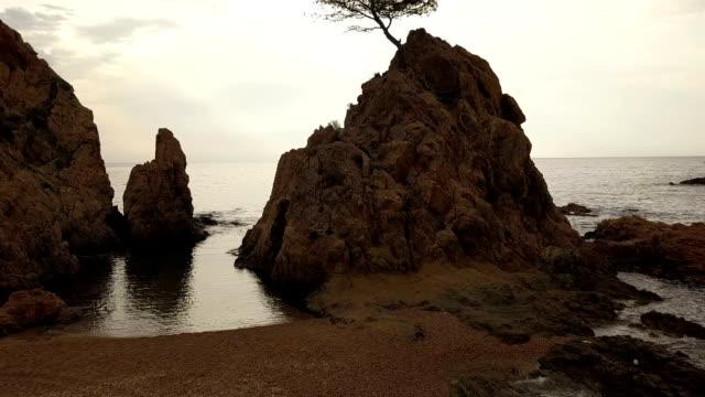 lonely tree on a rock, tossa de mar, spain - mar stock videos & royalty-free footage