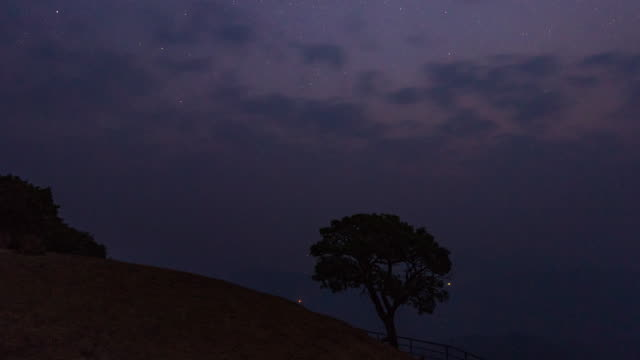 lonely tree on mountain, dawn to day time lapse video - dawn to day stock videos & royalty-free footage