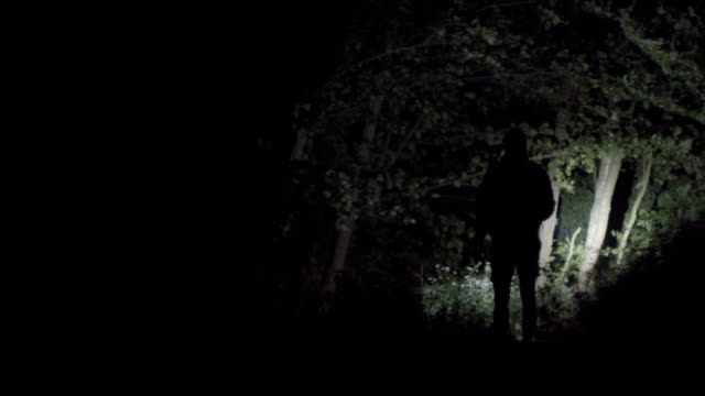 lonely walk in the forest at night - reed grass family stock videos & royalty-free footage