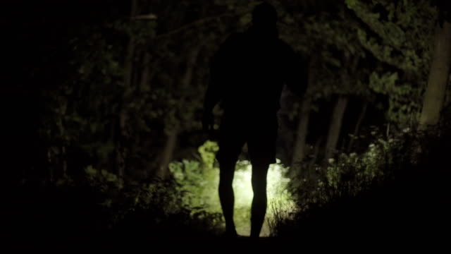 Lonely walk in the forest at night
