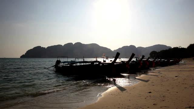 vídeos de stock, filmes e b-roll de long beach em ilhas phi phi - árvore tropical