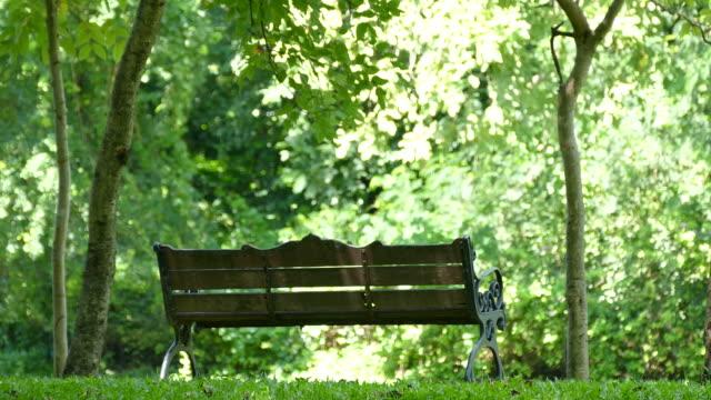 long chair in garden