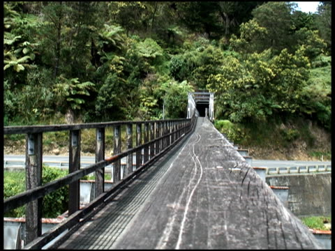 Long Deserted Bridge Goes into Tunnel in Country