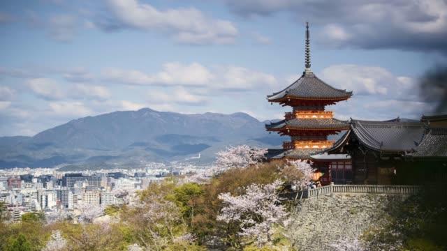 4k long exposure timelapse kiyomizu-dera temple wirg cherry blossom, kyoto, japan - temple building stock videos & royalty-free footage
