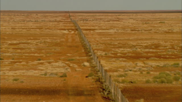 WS ZI AERIAL Long fence extending over miles of land used to keep out dingoes, Emus visible in distance, Anna Creek, South Australia, Australia