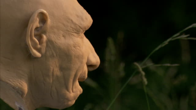 Long grasses frame the carved bust of a primitive man. Available in HD