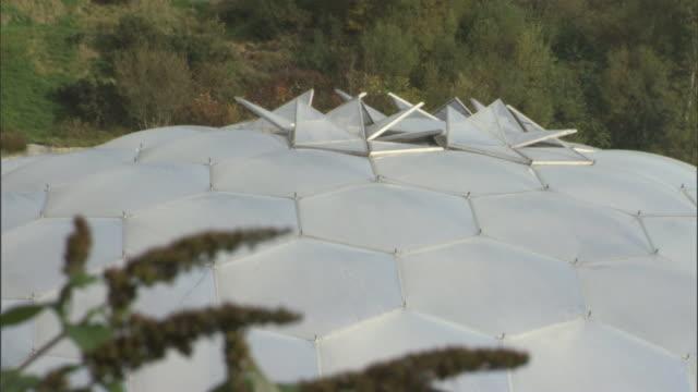vídeos y material grabado en eventos de stock de long grasses frame the dome of the eden project in cornwall. - cornwall inglaterra