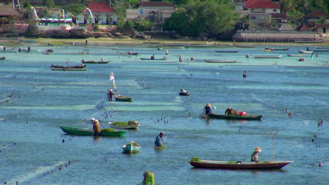 long lens of fishermen in indonesia - indonesia stock videos & royalty-free footage