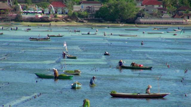 Long Lens of Fishermen in Indonesia