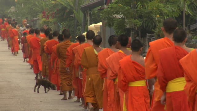 ls long line of monks collecting alms / luang prabang, laos - religion stock videos & royalty-free footage