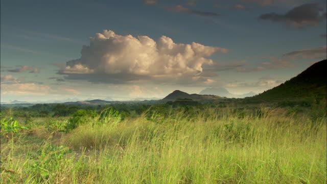 vídeos de stock e filmes b-roll de long shot across the fertile shire highlands.  - malávi