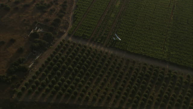 long shot aerial pan-left - a uav soars over farmland in israel. / israel - 無人航空機点の映像素材/bロール