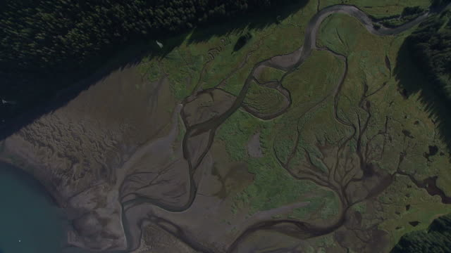 """""""long shot aerial pan-right push-in-green plants surround a river delta. / alaska, usa"""" - delta stock videos and b-roll footage"""