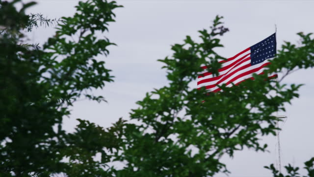 long shot american flag flies beyond trees - arkansas stock videos & royalty-free footage