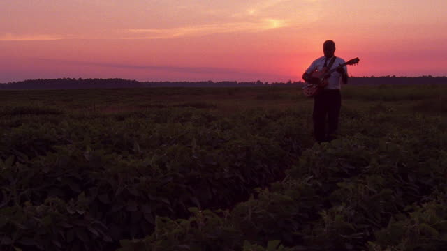 long shot black man playing guitar and walking through field at sunset / tennessee - memphis tennessee stock videos and b-roll footage