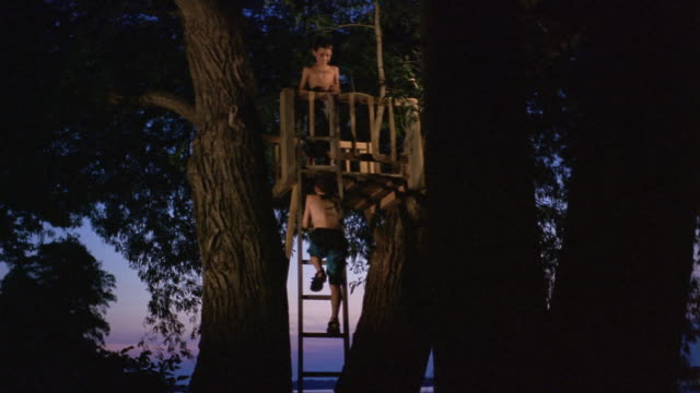 long shot boy climbing up ladder to treehouse at dusk/ friend at top giving him hand/ long pond, new york - treehouse stock videos & royalty-free footage