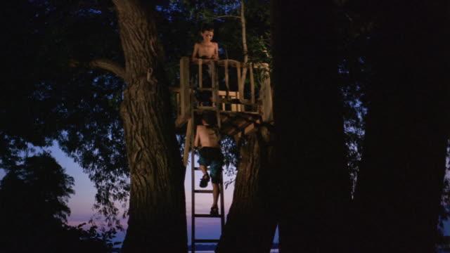 vídeos de stock, filmes e b-roll de long shot boy climbing up ladder to treehouse at dusk/ friend at top giving him hand/ long pond, new york - treehouse