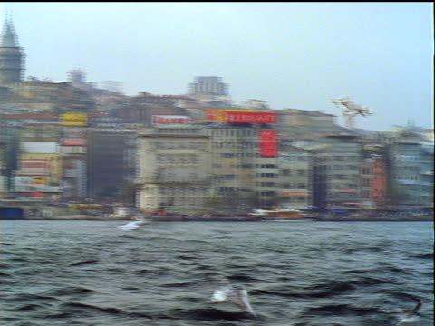 long shot pan coastal city of istanbul / seagulls flying over bosporus in foreground / turkey - bosphorus stock videos & royalty-free footage