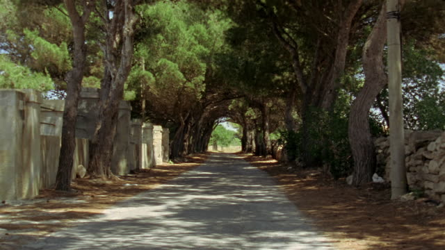 long shot country road flanked by shade trees in favignana / egadi islands, sicily, italy - stationary process plate stock videos & royalty-free footage