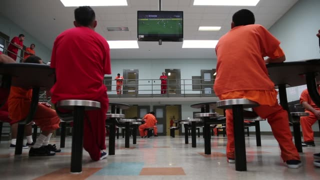 long shot, detainees watching a soccer game in the general population wing. the facility, the largest and newest immigration and customs enforcement... - detainee stock videos & royalty-free footage