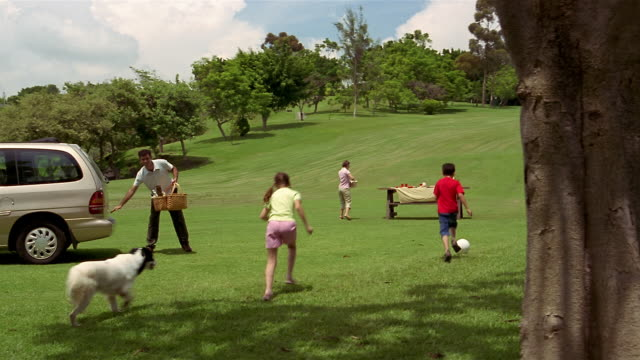 stockvideo's en b-roll-footage met long shot family heading from suv to picnic bench for picnic in park / mexico - picknick