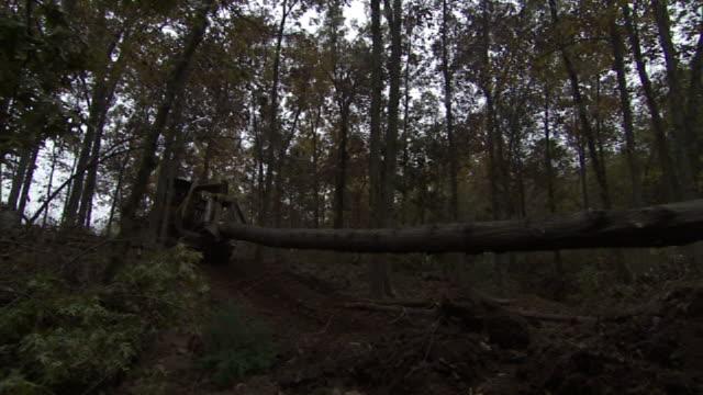 Long Shot hand-held pan-left - A skidder drags a log through a forest. / Missouri, USA
