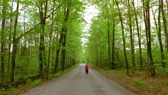 long shot jogger running toward cam on road lined w/tall green trees / vermont - spandex stock videos & royalty-free footage