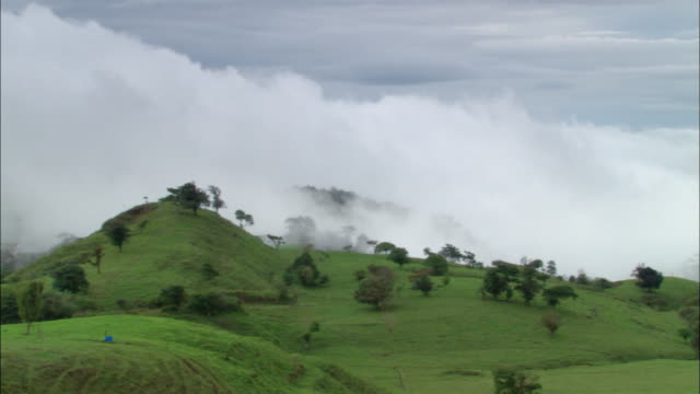 long shot low clouds rolling over countryside / pan cows grazing in pasture on farm / sabotay, costa rica - 中央アメリカ点の映像素材/bロール