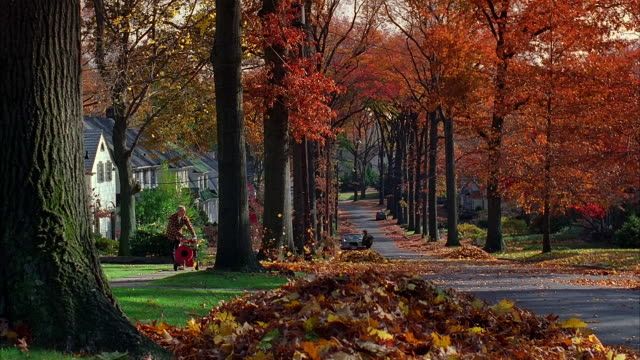 long shot man blowing autumn leaves into suburban street as children play / new jersey - autumn stock videos & royalty-free footage