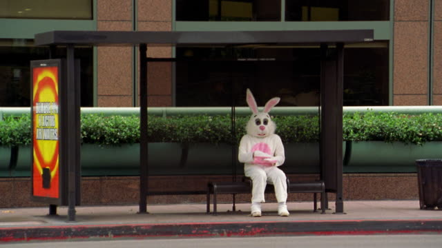 vídeos de stock, filmes e b-roll de long shot man in rabbit costume putting on costume head while sitting at bus shelter with bus passing / l.a. - 20 segundos ou mais