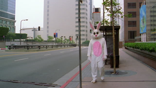 long shot man in rabbit costume walking towards camera and looking for bus before returning to bus shelter - kelly mason videos stock videos & royalty-free footage